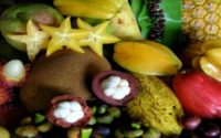 Rare fruits in India which you must try
