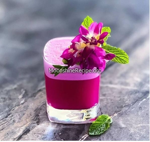 Lady Magenta Cocktail