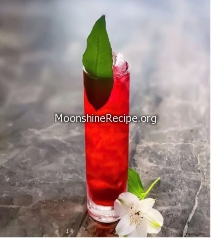tall red and bitter cocktail