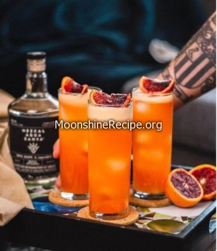 Aperol Campari Cocktail